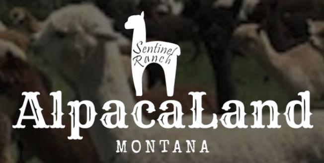 AlpacaLand Montana