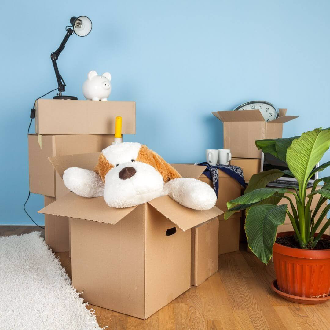 moving boxes with belongings in them