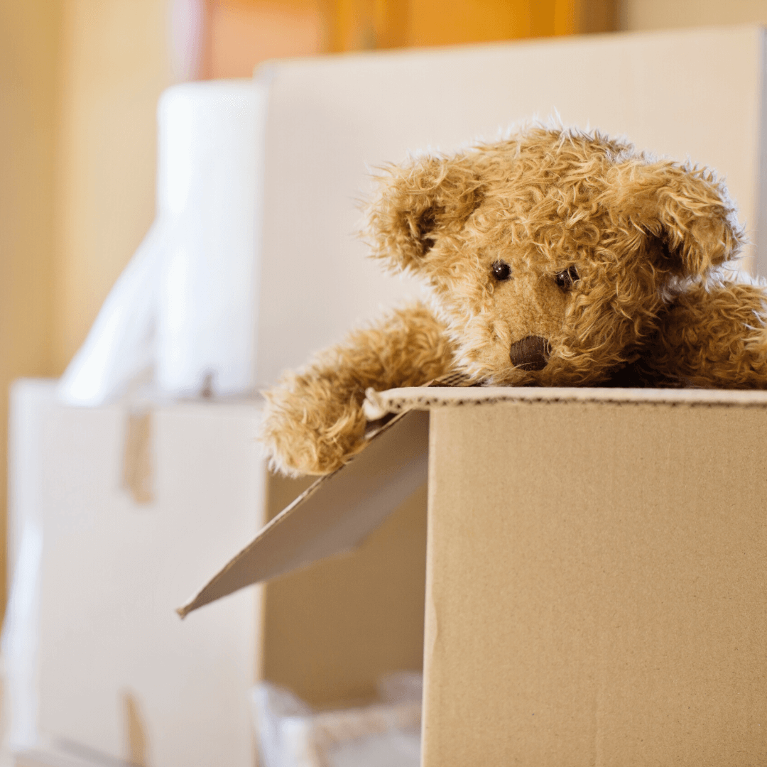 moving box with a teddy bear inside